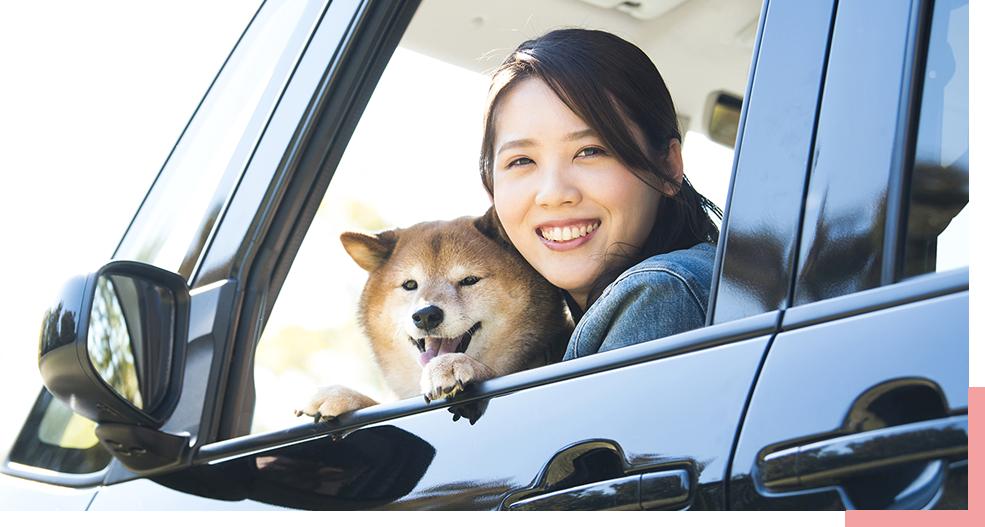 空気がこもってニオイが残りやすい車の中も、スッキリ心地よく。
